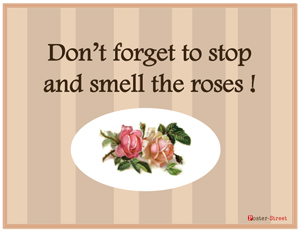 Office Posters-Office Posters - Motivational Posters - Smell the Roses